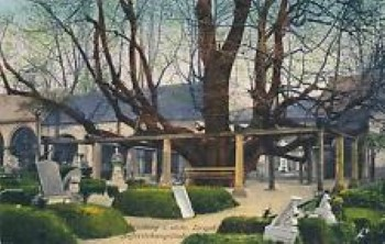Annaberg - Alter Friedhof 1921 (Andere)